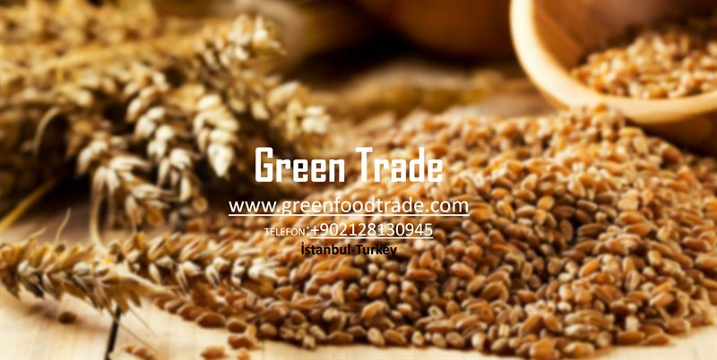 GreenFoodTrade