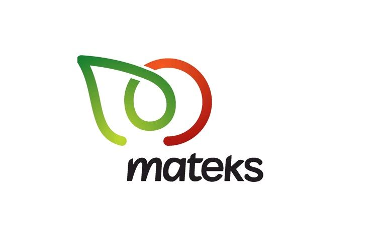 Mateks Food Industry Inc.